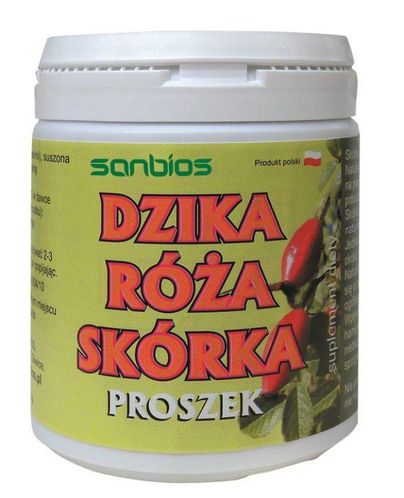 dzika-roza2