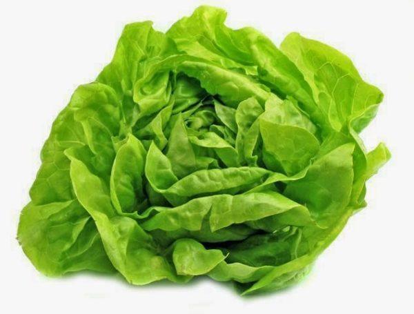 salata maslowa